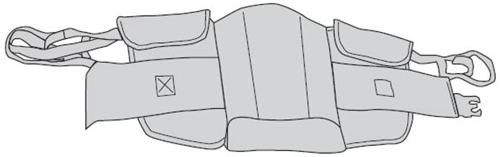 Picture of Sit to Stand Sling