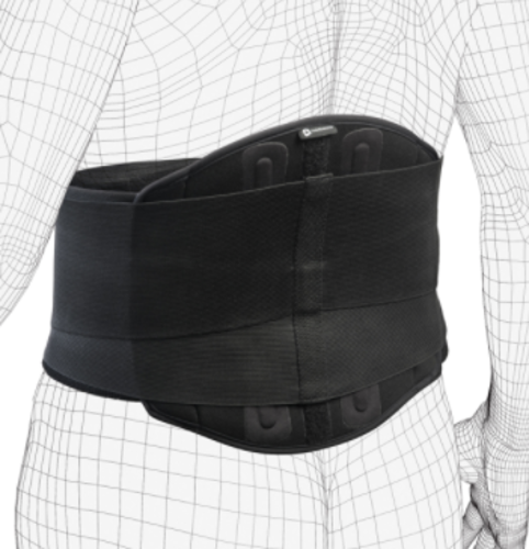Picture of EXO Back Stabilizer, One Size
